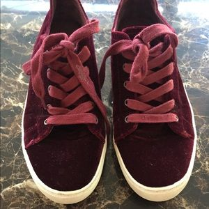 Zara basic collection suede sneakers